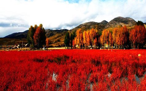 稻城图片风景图片高清