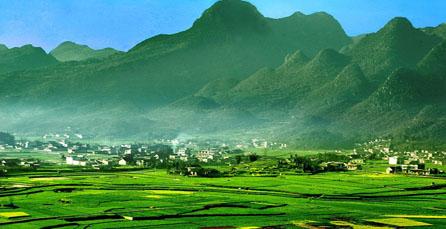 勐根农场风景